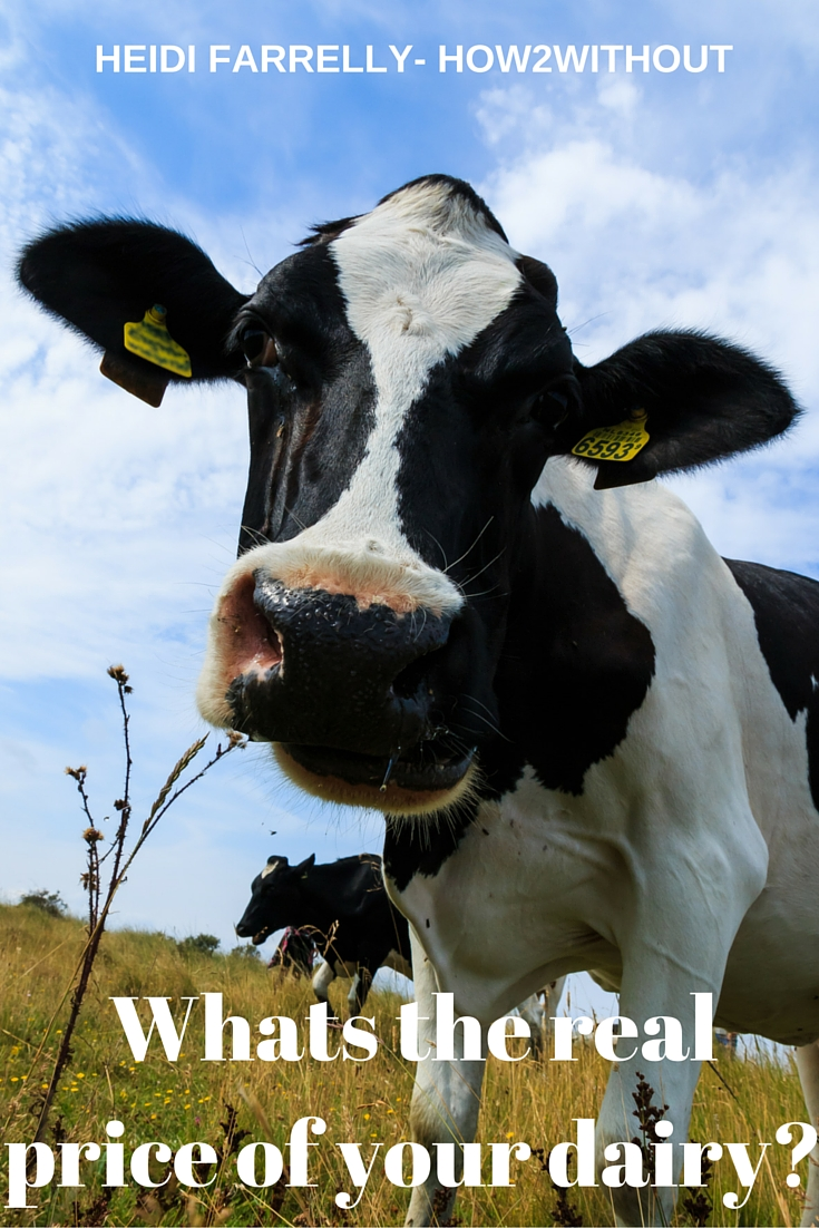 What's the real price of your dairy?